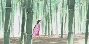 kaguya bamboo