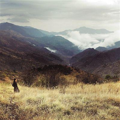 assassin landscape